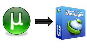 download torrent using idm